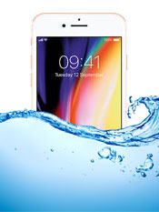 iPhone 8 Water Damage Inspection Service