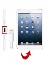 Apple iPad  Mini  Charging Port Repair